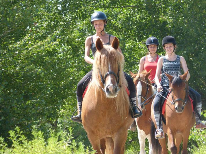 faire du cheval gard 2749aeb943f